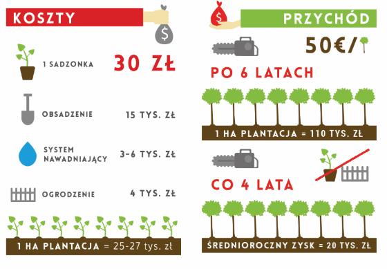 inwestowanie w sadzenie drzew - Inwestowanie małych kwot - przykłady dla 100zł, 500zł, 1000zł
